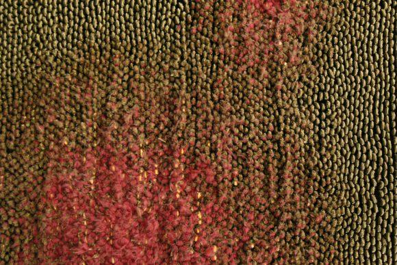 Ripening Rugs (Adrianus Kundert)